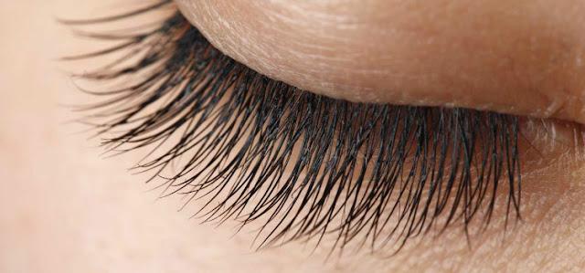كعالم آخر مستقلٍ بذاته تحت الميكروسكوب 8-Natural-Remedies-To-Get-Beautifully-Long-Eyelashes.jpg