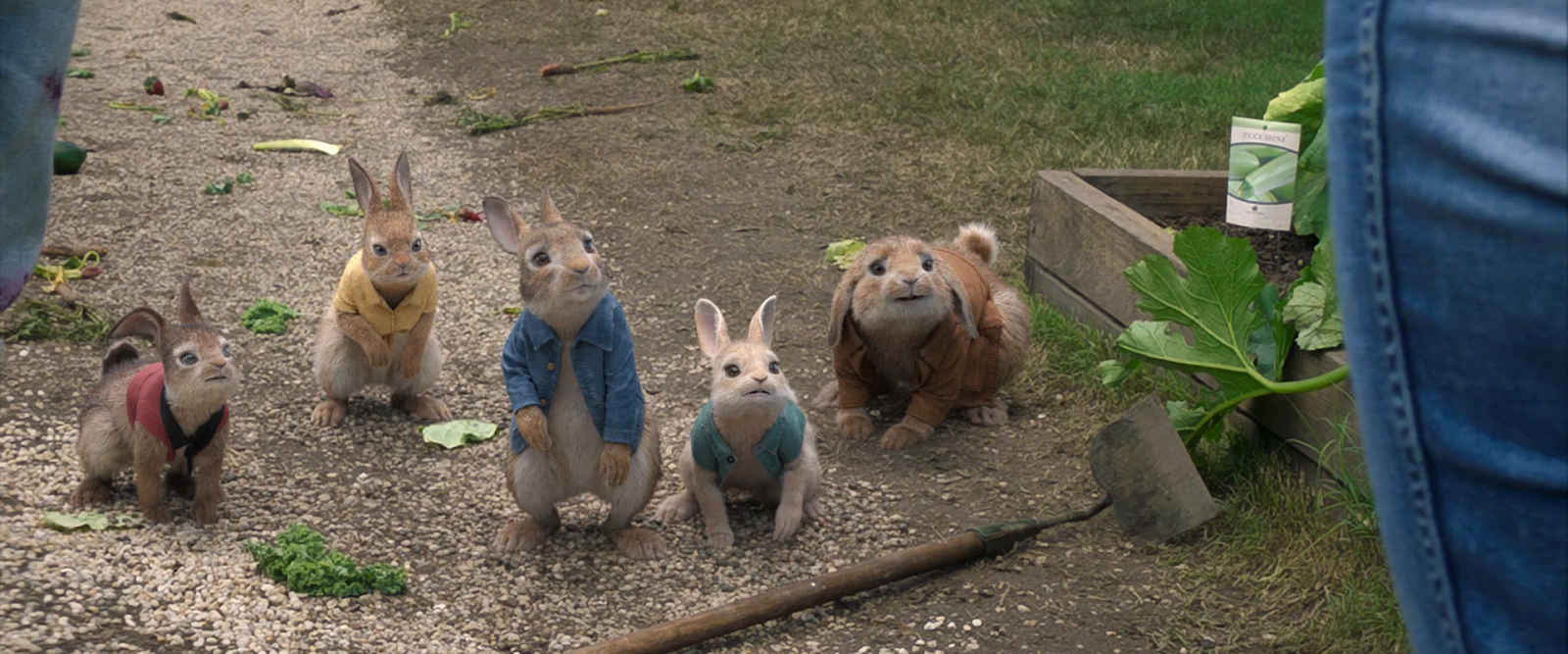 Las Travesuras de Peter Rabbit (2018) BRRip 720p Latino-Ingles captura 4