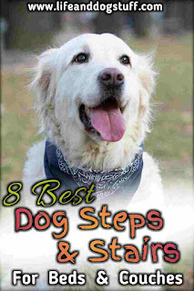 8 Best Dog Steps and Stairs For Bed