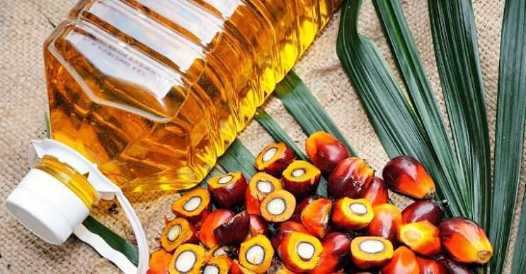 Yemeklerinizde palm yağı kullanırsanız daha çabuk doyar ve daha uzun süre tok hissedersiniz.