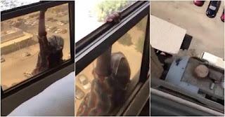 Mulher cai do 7 andar de um prédio e patroa filma sem prestar ajuda (Cenas fortíssimas) – VEJA VÍDEO