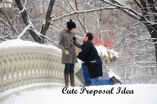 Clever Ideas for Best Proposal 2017