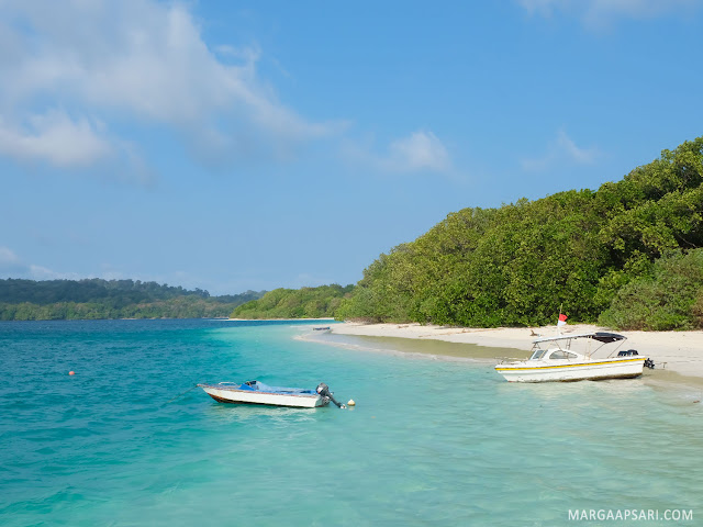 Open Trip ke Pulau Peucang