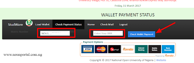 How to Check Noun Wallet Payment status