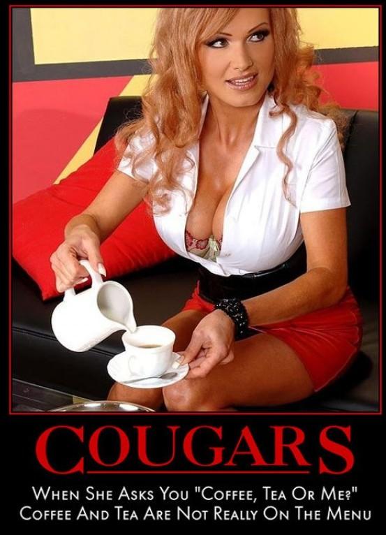 Simply Delicious: Define Cougar?