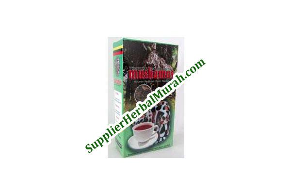 Mushamus Sarang Semut Curah 50 gram