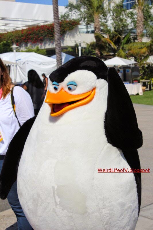 People dressed as the Penguins of Madagascar walking around outside San Diego Comic Con 2014