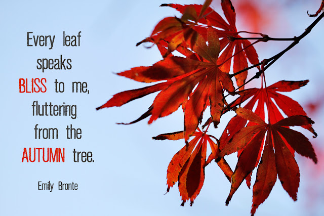 Nature Quote - Autumn Leaf Tree - Emily Bronte