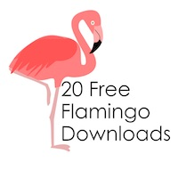 20 Free Flamingo Downloads