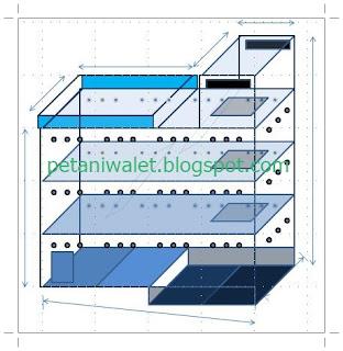 Beberapa Istilah Penting Dalam Desain Rumah Walet