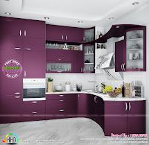 Modular Kitchen Interior Designs