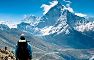 Geriforte Himalaya Para Que Sirve