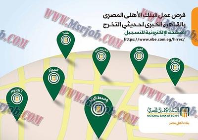 وظائف البنك الاهلى المصري لحديثى التخرج دفعات 2013 حتى 2016 والتقديم والاوراق