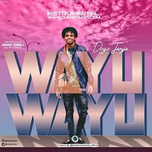Download Mp3 | Dogo Janja - Wayu Wayu | Instrumental