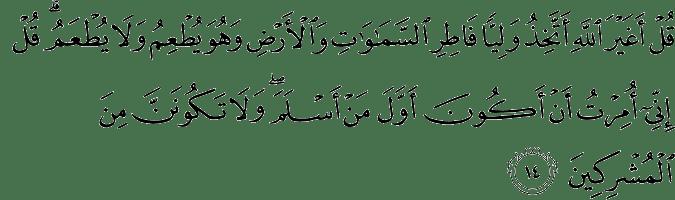 Surat Al-An'am Ayat 14