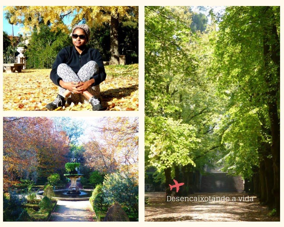 Jardim Botânico da Universidade de Coimbra_desencaixotando a vida