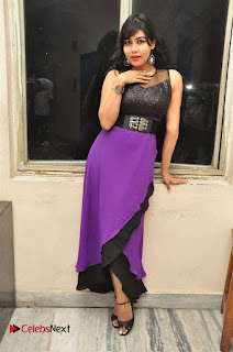 Telugu Actress Rachana Smith Stills at Money is Honey Audio Release  0089.jpg