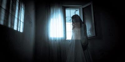 6 Hewan yang Dipercaya Dapat Melihat Keberadaan Hantu