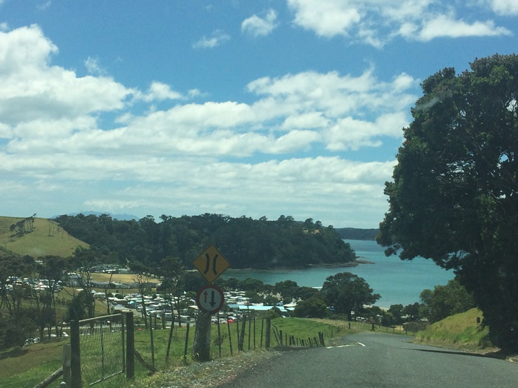Heading down the hill to Martin's Bay