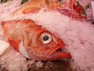 ikan mandi amis anyir penyebab air air air