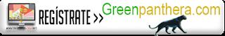greenpanthera, encuestas pagadas