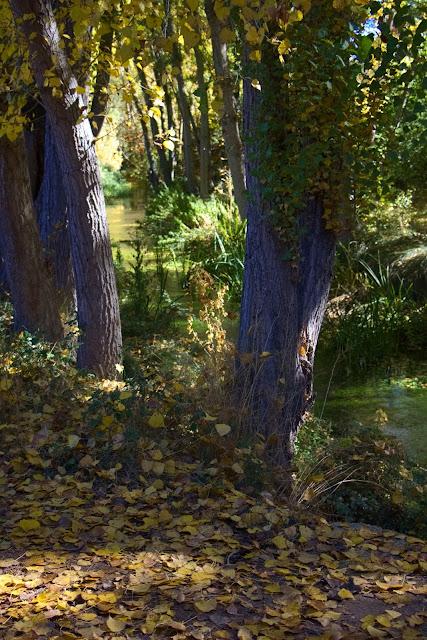El río Dulce