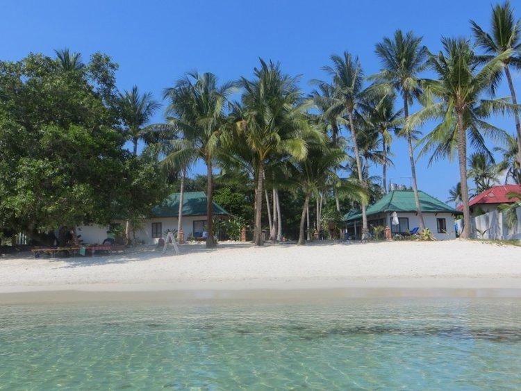 Пальмы и дома на пляже Сильвер Бич