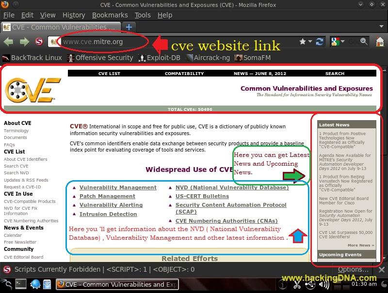 mitre-cve on backtrack 5 | HackingDNA