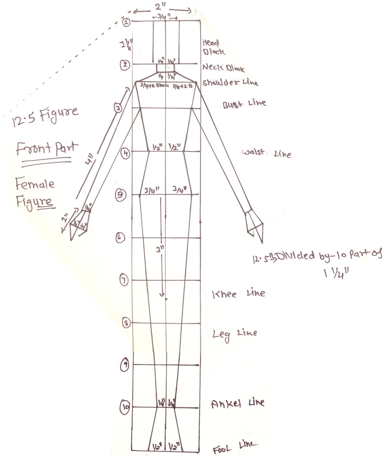 Fashion model sketch template male