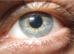 Caygill s Eye ColorsViridian Green Eyes