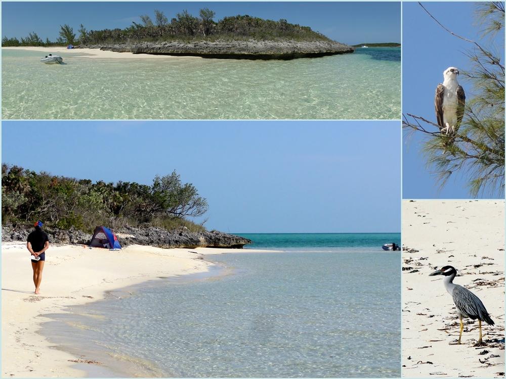 Nassau Bahamy podłączyć c-randka na co dzień