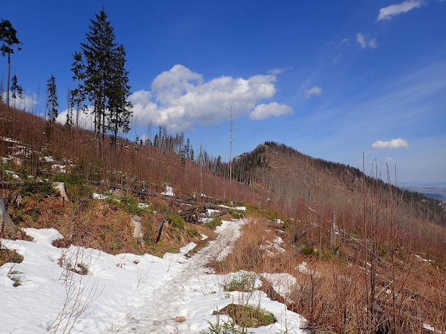 Widok na Nosal ze szlaku do Doliny Olczyskiej