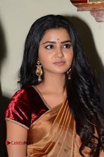 Actress Anupama Parameswaran Stills in Silk Saree with Shatamanam Bhavati Team at Sandhya Theater  0019.JPG