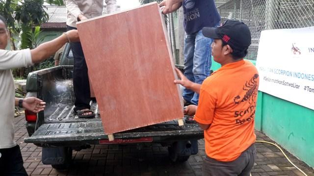 BKSDA Jakarta dan Scorpion Relokasi 6 Siamang  Untuk PPS Kalaweit