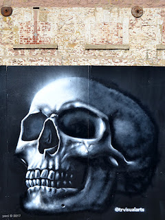 wonderwalls 2017 - skull, trvisualarts aka thomas readett