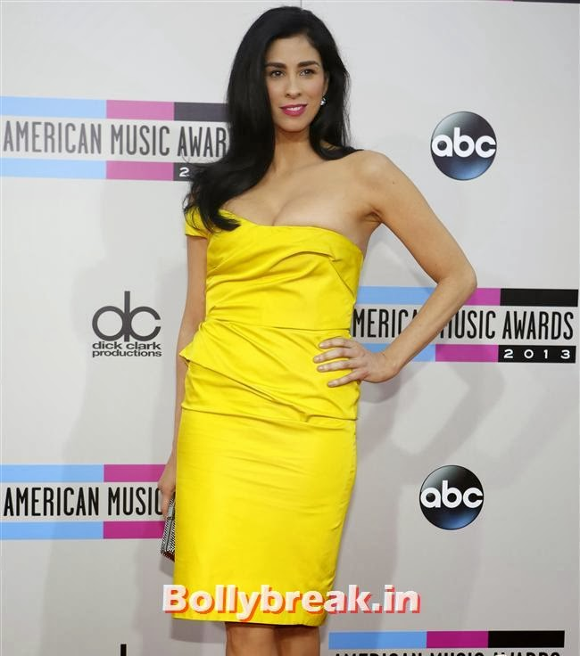 Sarah Silverman, American Music Awards 2013