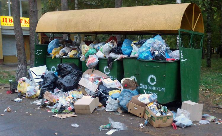 В России объявлена война с мусором, побеждает мусор.