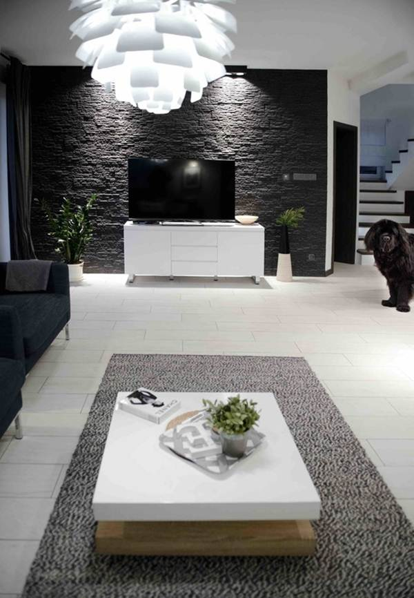 Black and White Decor For a Multifunction Environment 3