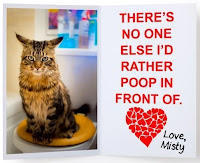 no one else I'd rather poop in front of cat litter box embarassed squirt love card funny birthday valentines wedding