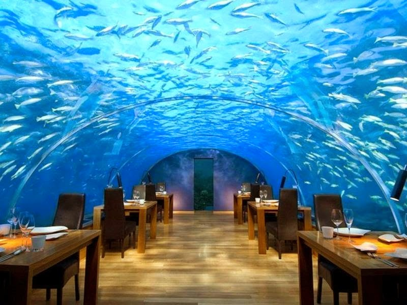 Ithaa Maldives : The world's first ever undersea restaurant