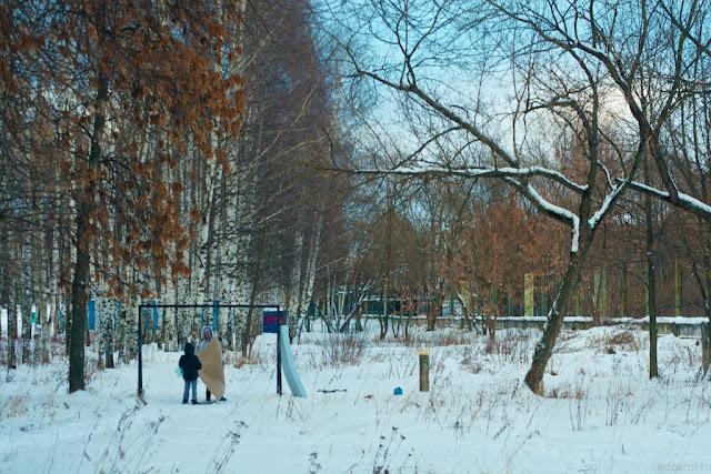 Парк у озера. Зимний день.