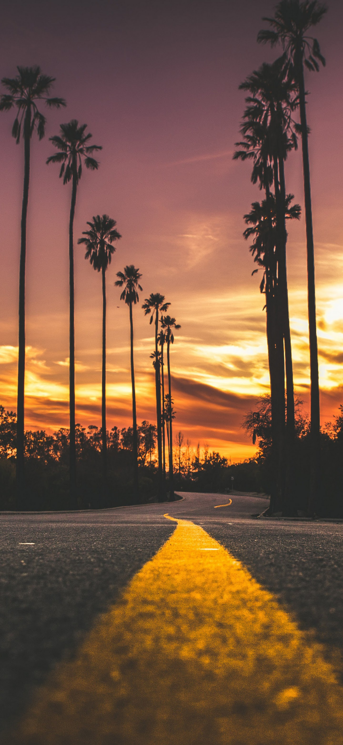 Sunset Road Landscape Scenery 4k Wallpaper 170