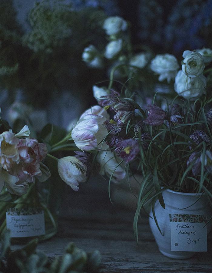 Kreetta Järvenpää Photography ©