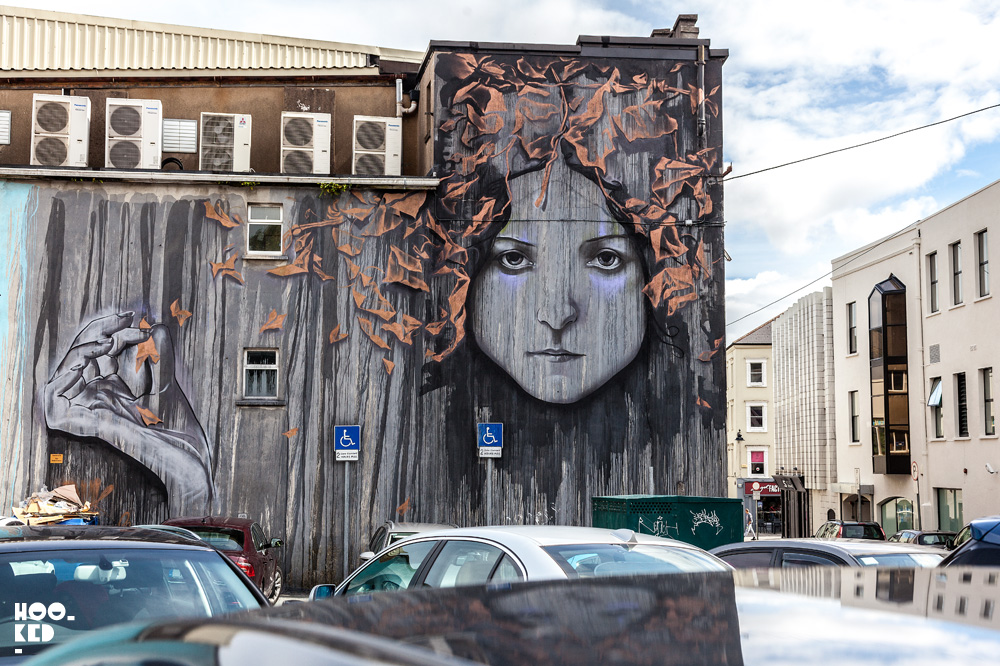 Waterford Walls, Ireland's Largest Street Art Festival