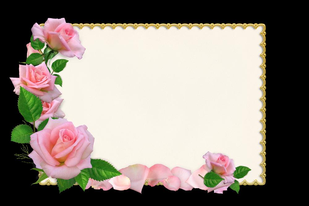 Marcos De Flores Para Tarjetas De Invitación