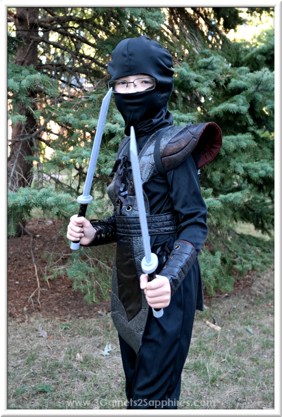 Detailed Ninja Fighter Leather Boys Halloween Costume  |  3 Garnets & 2 Sapphires