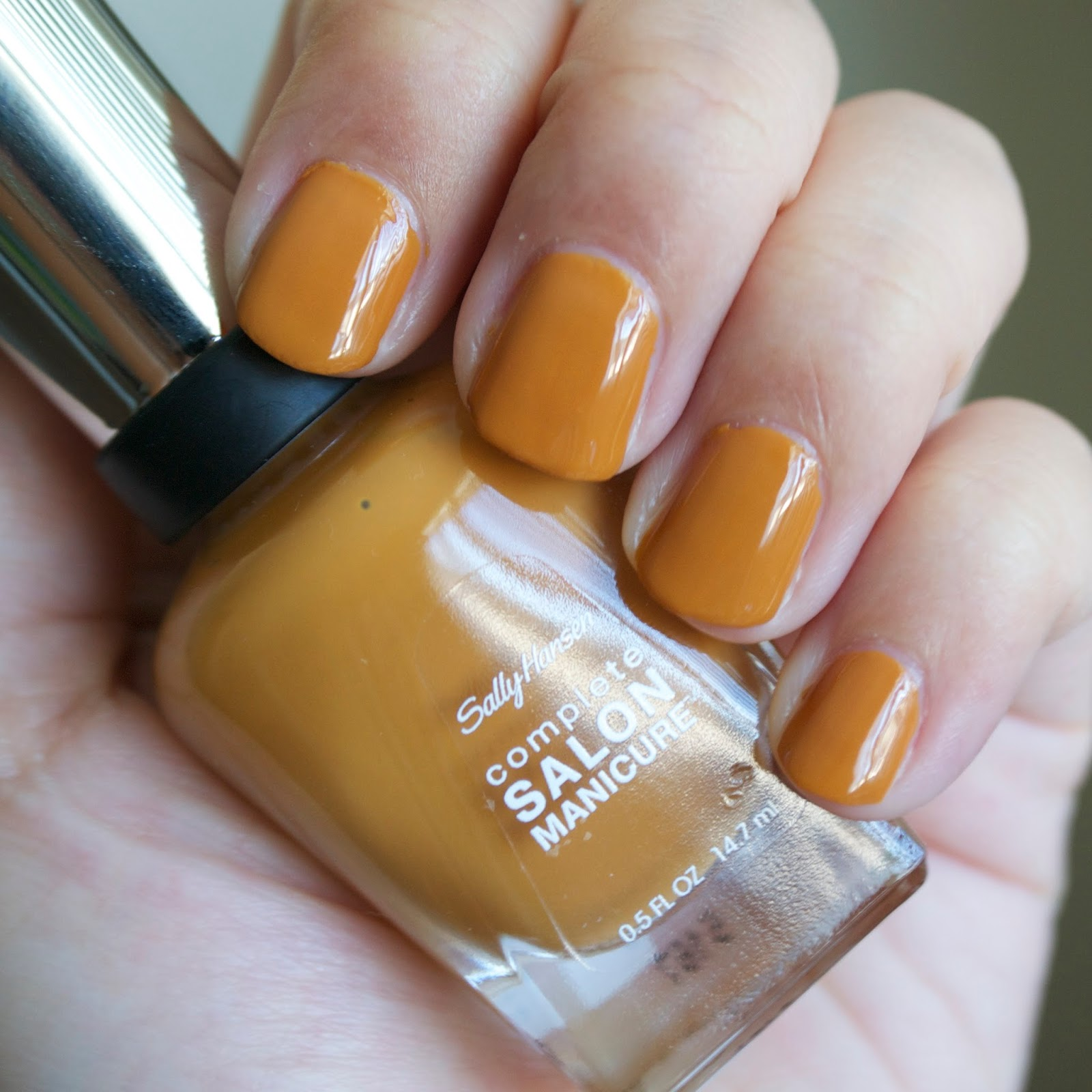 Aquaheart: Sally Hansen Fall 2015 Designer Inspired Shades