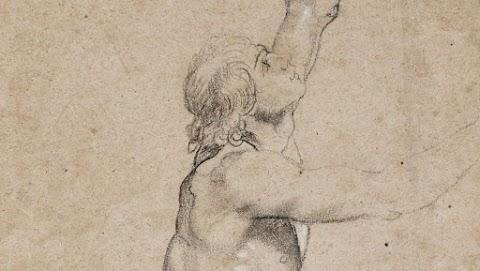 Bírálják Hollandiában a királyi család döntését egy Rubens-rajz elárverezéséről