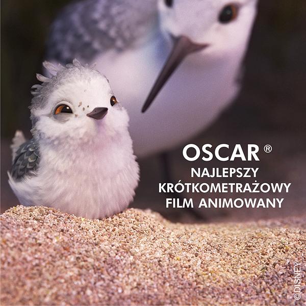 Wyniki ceremoni wręczenia Oskarów 2017!