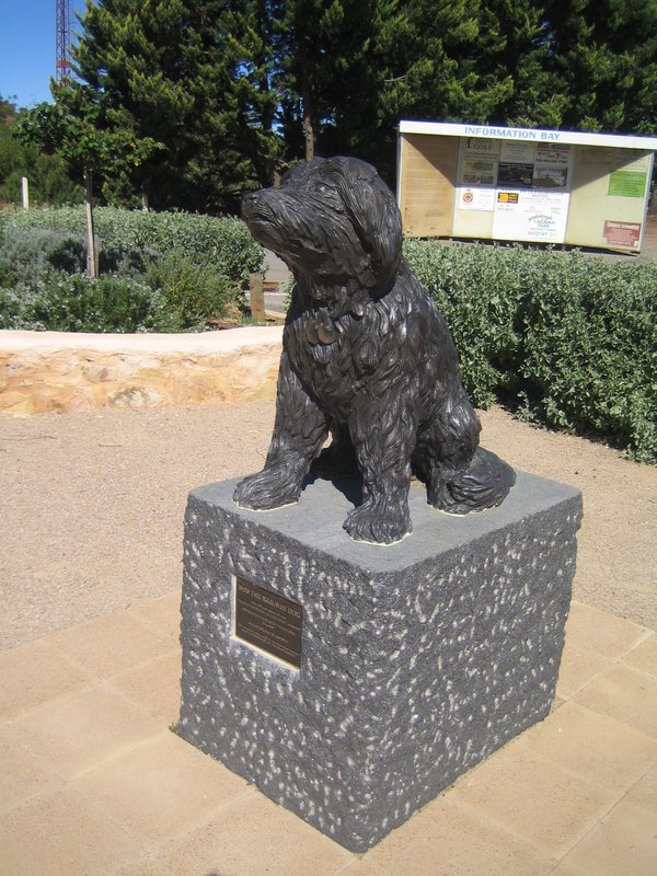 bob-the-railway-dog-statue-peterborough